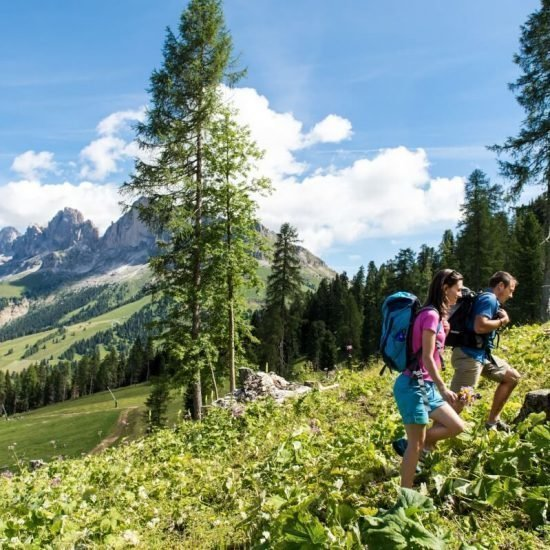 Impressioni da Furnerhof in Collepietra Alto Adige e dintorni 25