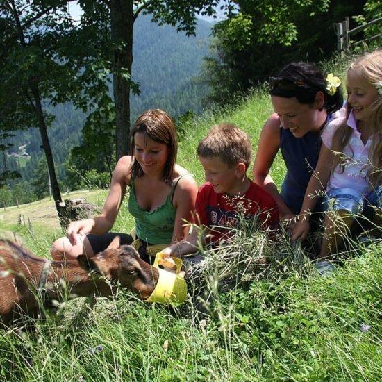 Impressioni da Furnerhof in Collepietra Alto Adige e dintorni 06